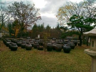 Tempat penyimpanan Kimchi, di tong-tong inilah Kimchi akan disimpan selama musim dingin tiba